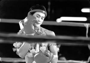 Beatiful Boxer