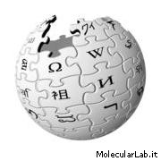 Wikipedia - Enclopedia ed informazione open source