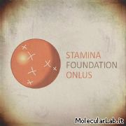 Stamina Foundation