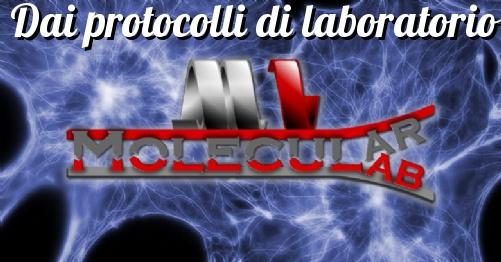 Protocollo - Colorazione membrane con Rosso Ponceau