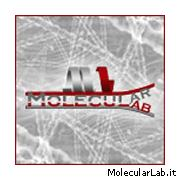MolecularLab.it